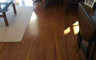 existing timber floor sanded and polished